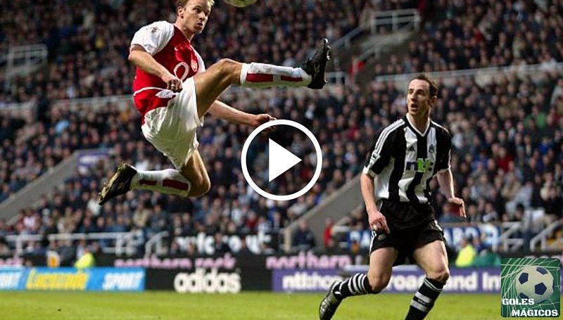 Bergkamp Newcastle
